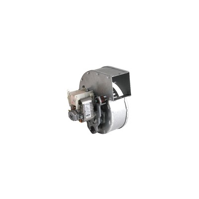 Ventilateur  - RIELLO : 4363730