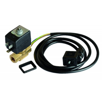 electrovanne veilleuse+cable - RENDAMAX : 65000265