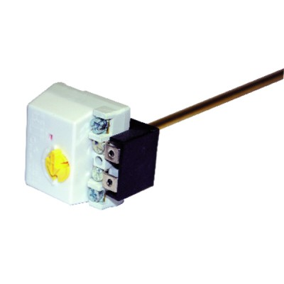 Thermostat à canne embrochable - COTHERM : TUS0013907