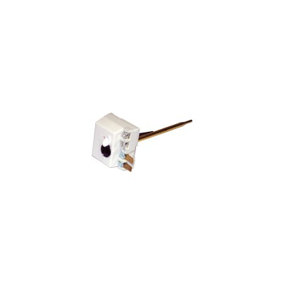 Thermostat Cotherm Tus Rgs